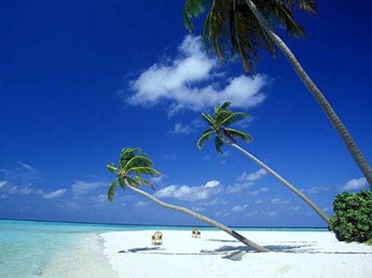 Beach - Koh Samui