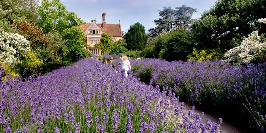 Le Manoir, Oxfordshire